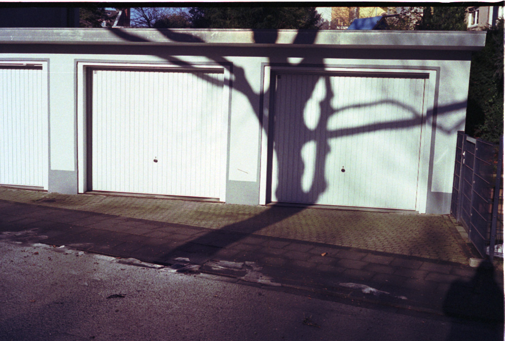 Tree's shadow over garage dor